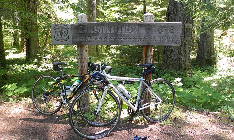 Dos bicicletas en Constitution Grove. Foto de Natalie Inyoue.